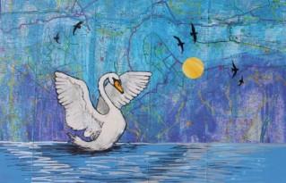 London Swan 55 x 38cm